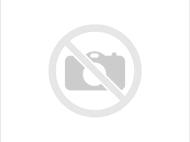 お台場ハワイフェスティバル2015.5.5